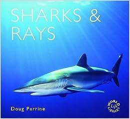 Sharks Worldlife Library