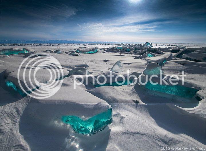 photo Alexey-Trofimov-1_zps472d903e.jpg