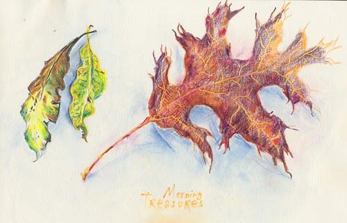 November 2013: Morning Treasures by apple-pine