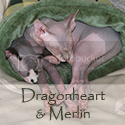 Dragonheart & Merlin