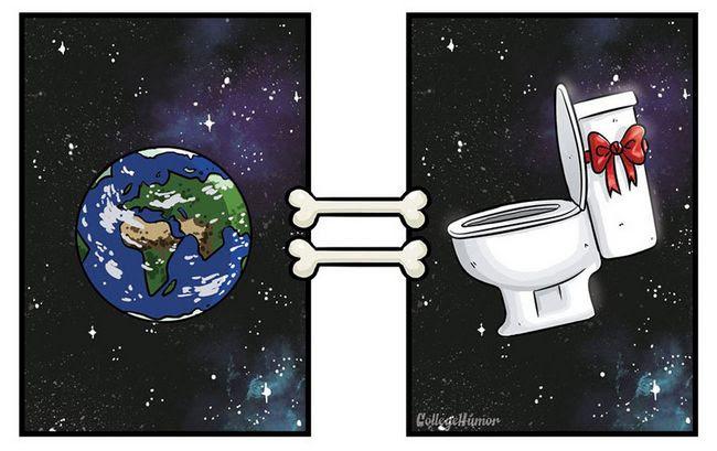 como-caes-veem-mundo-7
