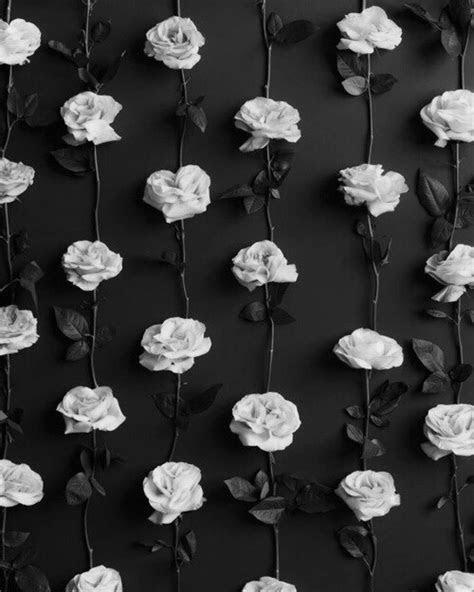 roses whiteroses wallpaper emoji background lockscreen