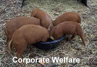 Corporate welfare is crony capitalism.