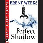 Perfect Shadow: A Night Angel Novella   [Brent Weeks]