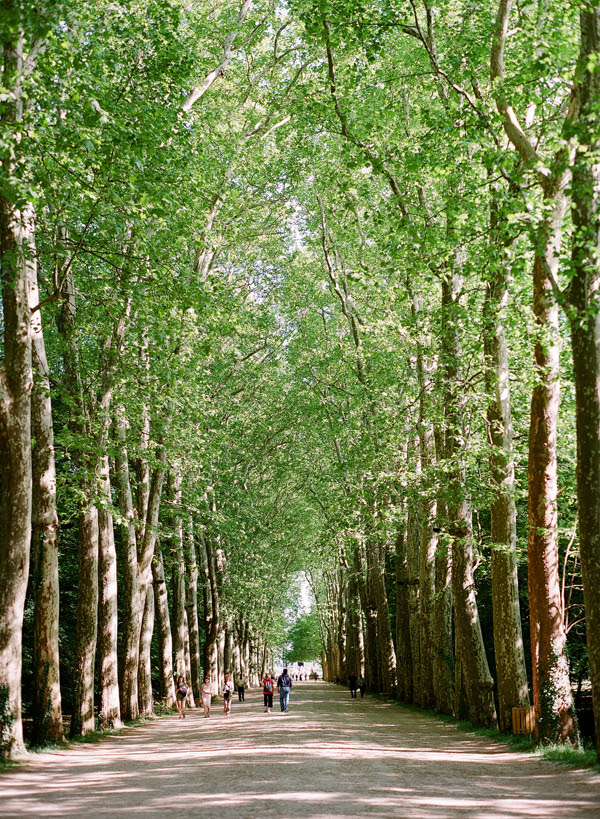 2011_0509_Chenonceaublog02.jpg