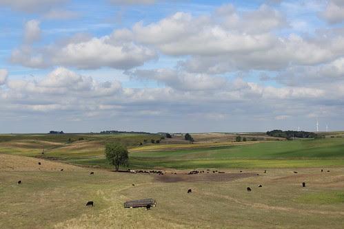 IMG_1644_MM70_I-80_Iowa Farmland