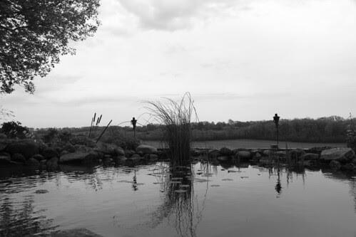 pond_gs
