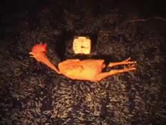 Rubber Chicken Movie