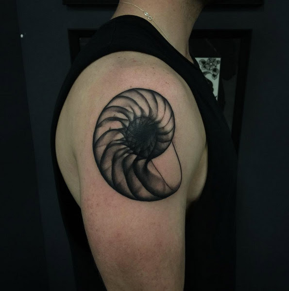 45 Beautiful Seashell Tattoos Designs For Men And Women Tattoosera
