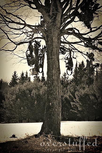 Biker's Graveyard