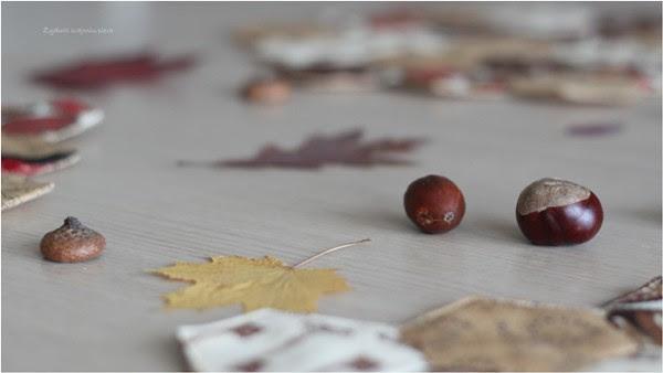 Autumn on the table