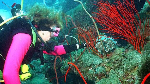 Woman on SS Yongala dive