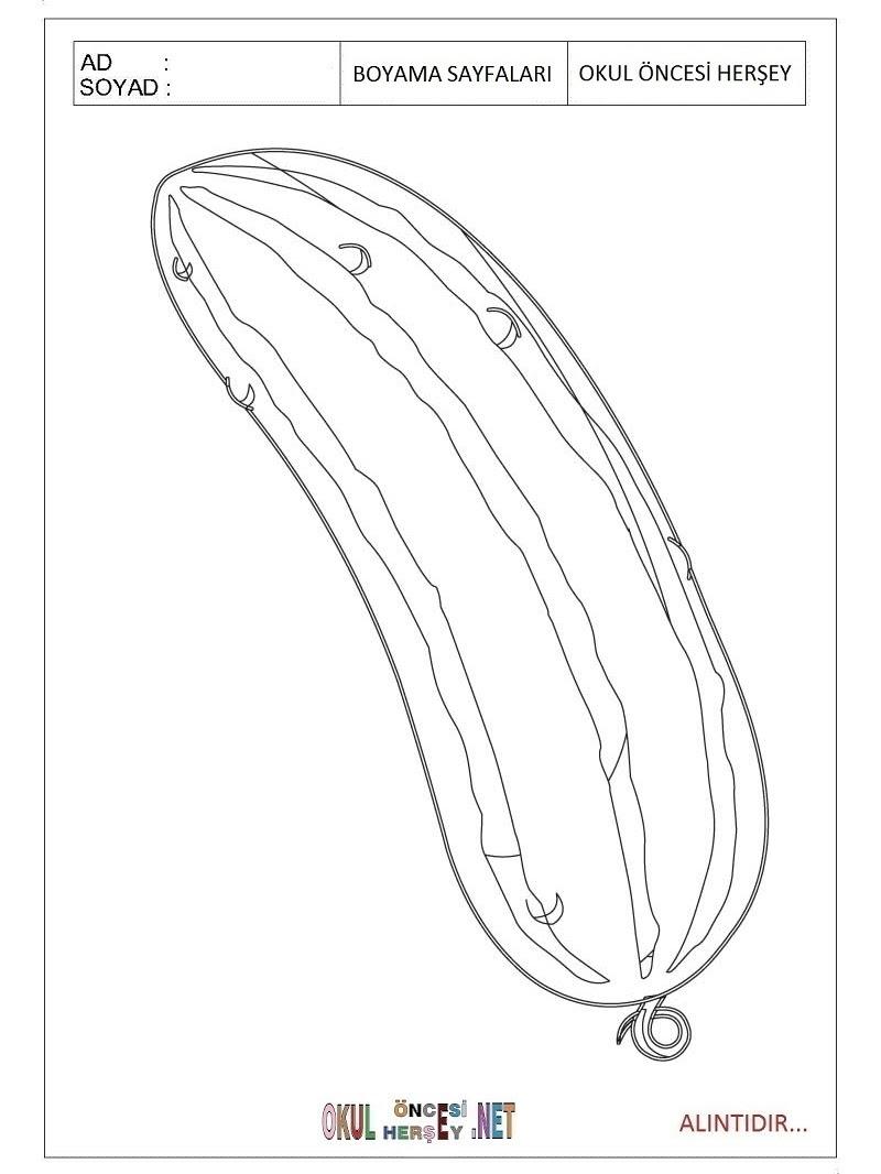 Kabak Boyama Sayfaları