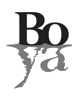 Boya Chilean Wine Vine Connections