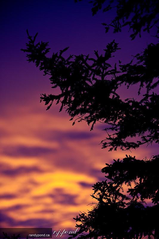 ~ 156/365 Sunset ~