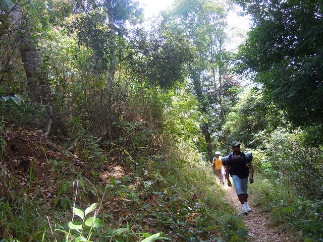 Brahmagiri_Trek_Path2