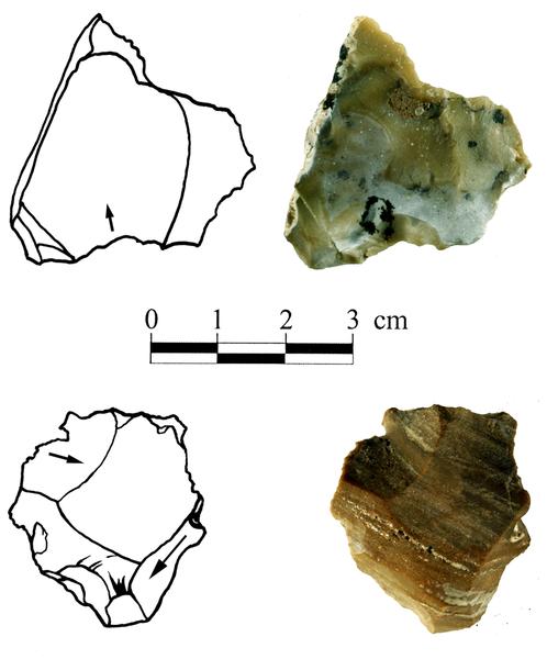 Figura 2 Cores-on-escamas en Bizat Ruhama conjuntos arqueológicos.
