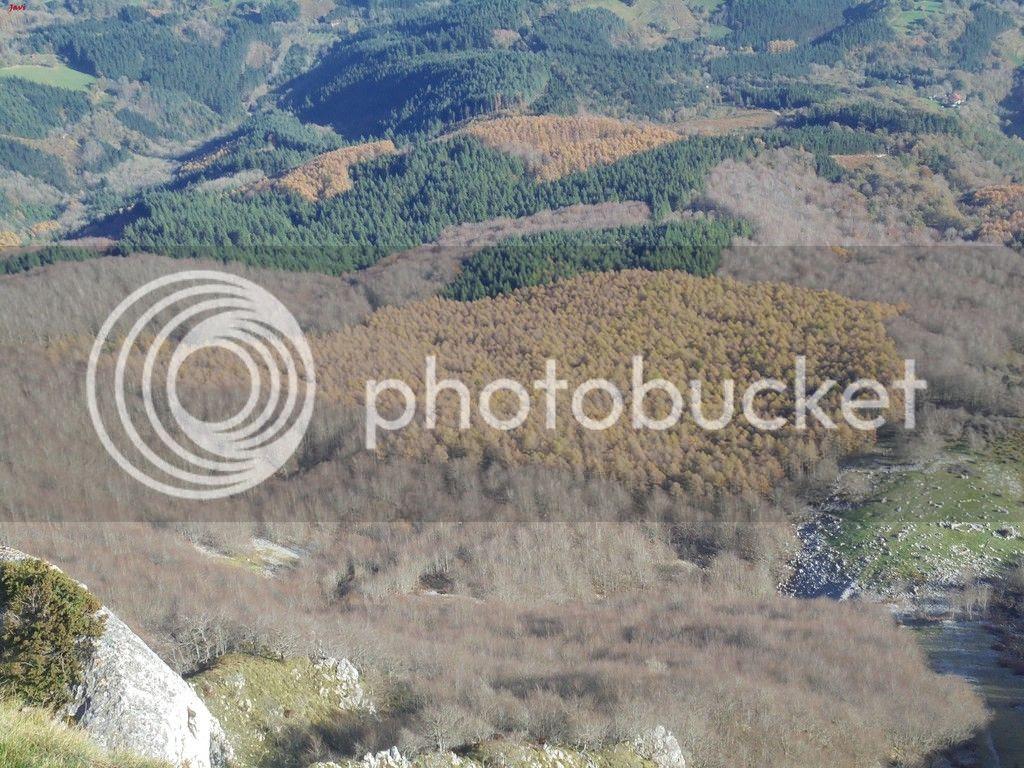 photo AITZGORRI 15-11-15 032_zpshf1icm33.jpg