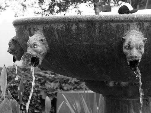 Getty Villa fountain bw
