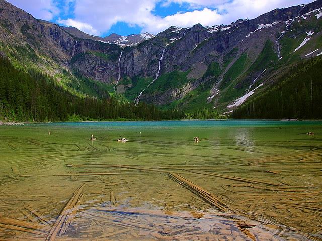 IMG_2445 Avalanche Lake, Glacier National Park