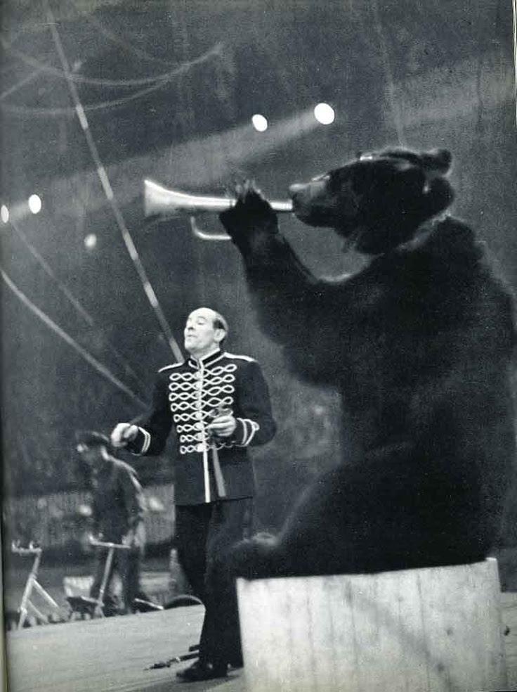 Le numéro 7 concerne le cirque.