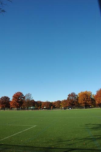Field 11, Parade Grounds, Caton Avenue