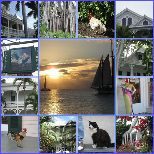Scenes From Key West