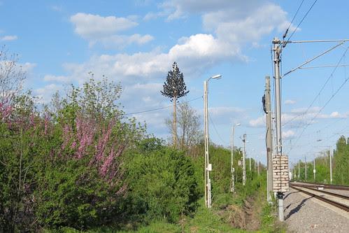 [Molidul electronic de beton din Băneasa -- vedere de ansamblu]