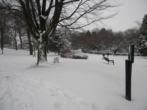 Snow 023-006.jpg