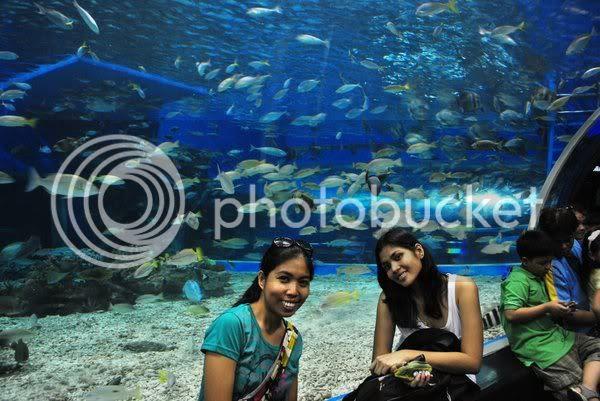 len and reg @ manila ocean park