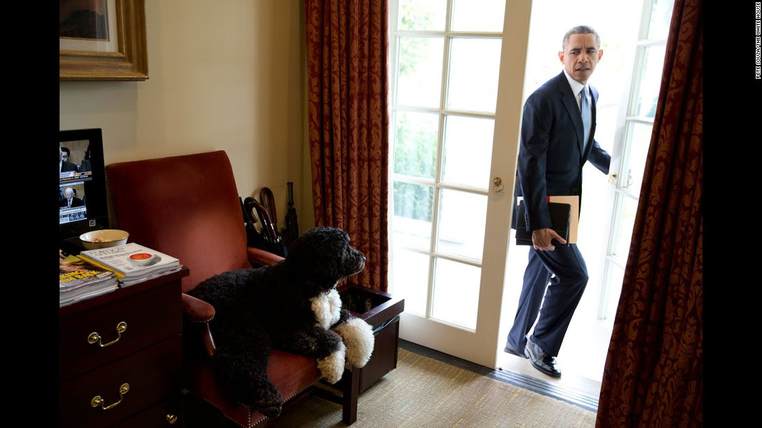 Image result for pictures of Obama in the Oval room.