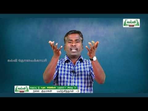 5th Social பயிற்சிப் புத்தகம் நல்ல குடிமகன் அலகு 3 Kalvi TV