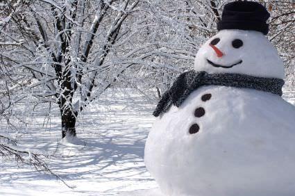Resultado de imagen de muñeco de nieve