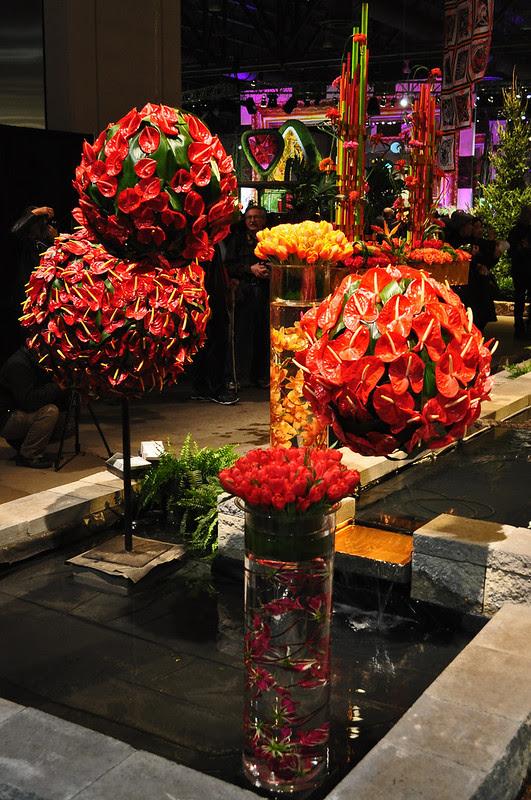 Flowers by David