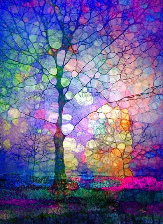 The Imagination Of Trees Art Print By Tara Turner