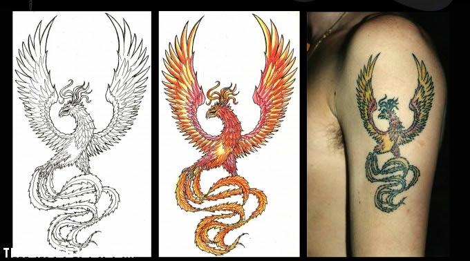 Ave Fénix Multicolor Tatuajes 123