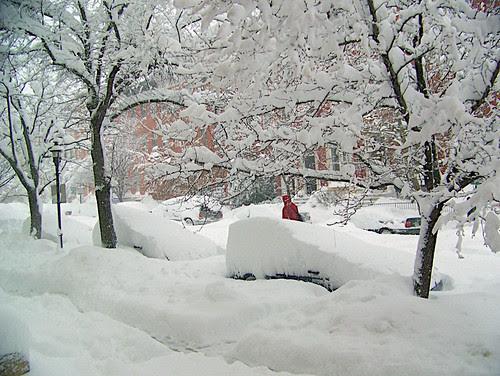 View from my mom's front door in Baltimore
