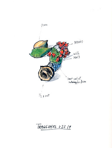 January 2014: Treasures by apple-pine