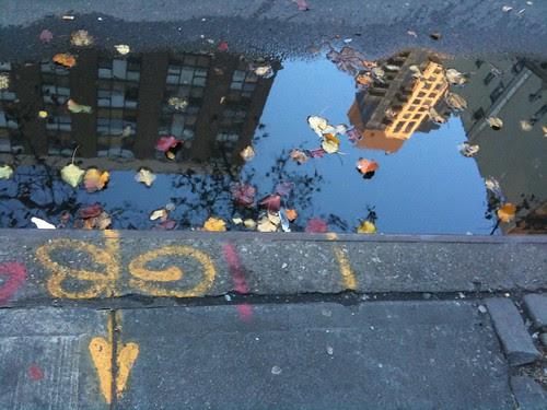 Rainwater mirror