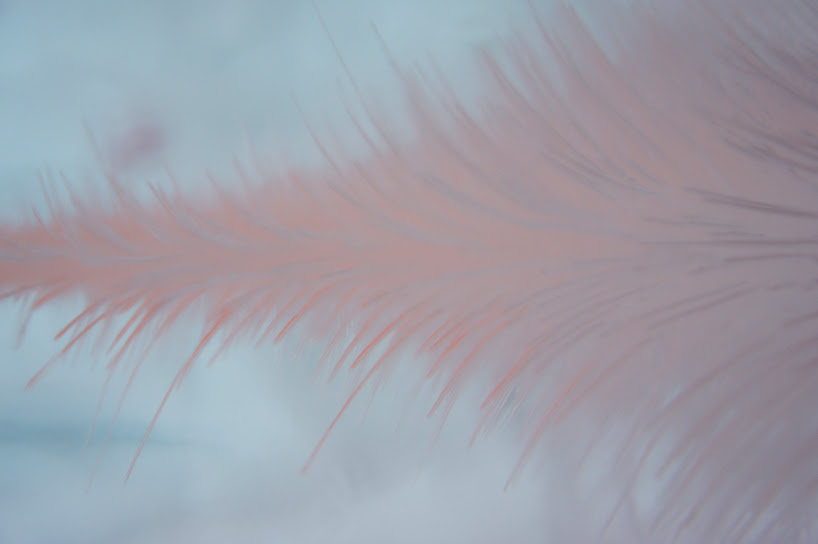 toshihiko-shibuya-colorizes-ice-hills-hotel-designboom-07