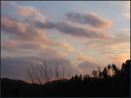 01 pink sunset