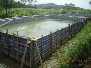 kolam terpal untuk lele pertenakanikan blogspot com