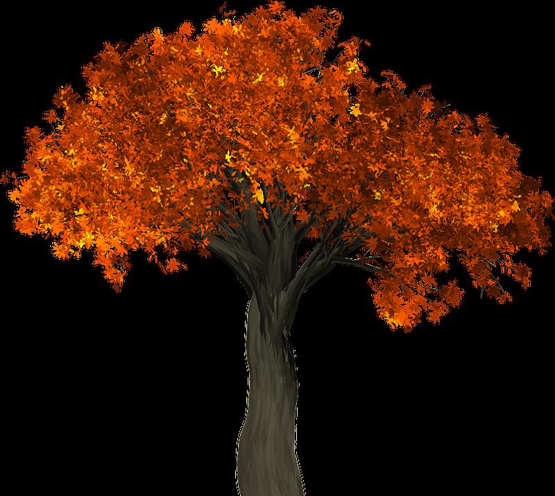 Ide 27+ Pixabay Tree