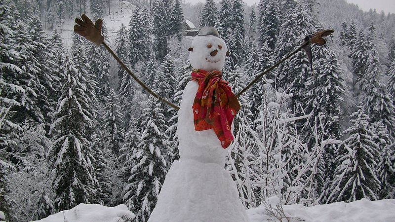 Bildergebnis für lachender Schneemann