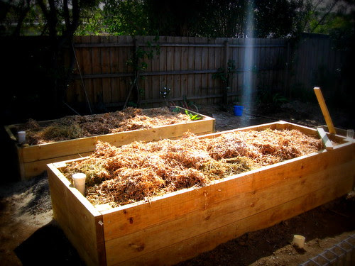 wicking planter boxes