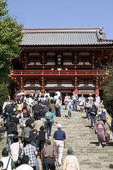 本宮, 鶴岡八幡宮, 鎌倉