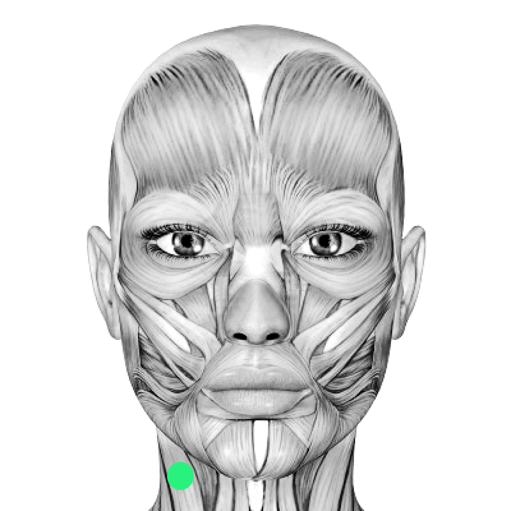 Digitizing Facial Movement During Singing | Michelle Cortese
