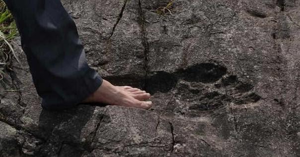 Enigmático descubrimiento: ¿Es esta la huella fosilizada de un antiguo gigante?