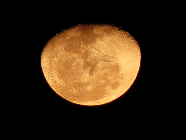 Bird on the Moon