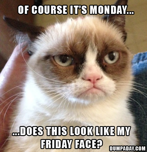 Funny Pictures About Monday That Help Get You Through Monday
